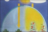 Diffusing Light Effect Agripolyane Film