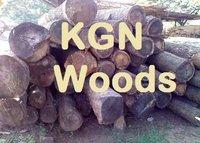 Silver Oak Wood Logs