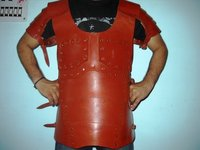 Harness Muscle Armor