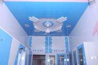 PVC Roof False Ceiling