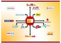 Generation Mlm Software - Cyrus Technoedge Solutions Pvt