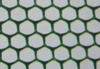 Isolon Hexa Fencing