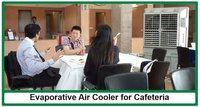 Evaporative Air Cooler For Cafeteria