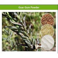 Food Additive Guar Gum Powder