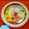 Printed Disposable Paper Plates (Kagaz Ki Plates)