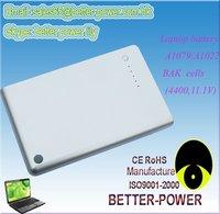 BAK Cells Battery For A1079/A1022/A1060