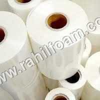 Diaper Film