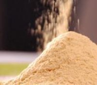 Powder Lecithin Soya
