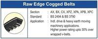Nirlon Raw Edge Cogged Bx V-Belts