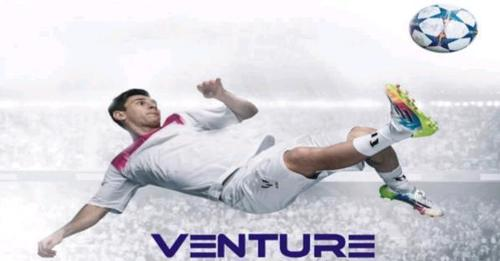 VENTURE ELECTRO SOLUTIONS (VENTURE GROUP)
