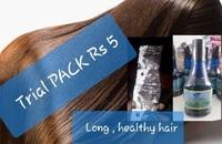 Long Healthy Hair Oil