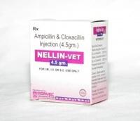 Ampicillin & Cloxacillin (INJ. NELLIN VET)
