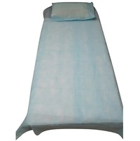 Bed Sheet with 1 Pillow Cover