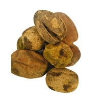 Hingot Fruit