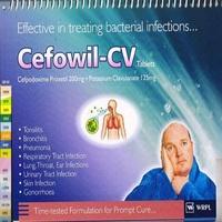 CEFOWIL - CV