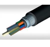 Fiber Optics (FO)