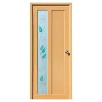 Glass Designer Doors