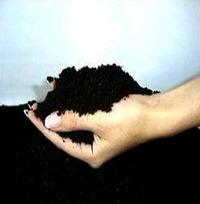 Bio Humus Fertilizer