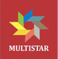 MULTISTAR MARINE AND SHIPPING SERVICES