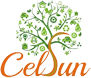 Celsun Ecoenergy And Infratech Holdings Private Limited