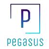 PEGASUS VENTURES