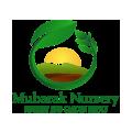 MUBARAK NURSERY