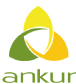 ANKUR SCIENTIFIC ENERGY TECHNOLOGIES PVT LTD