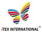 ITEX INTERNATIONAL