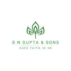S N GUPTA AND SONS