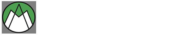 METAL ALLOYS (INDIA)