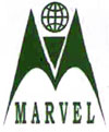 MARVEL INTERNATIONAL