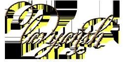 LAVYANSH STORE