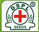 DOCTOR SEEDS INDIA