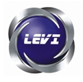 LEVI ENGINEERING GROUPS