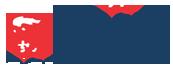 PACE INTERNATIONAL