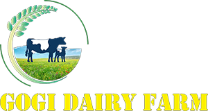 GOGI DAIRY FARM