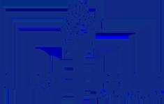 MIDAS PAINTS