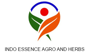 INDO ESSENCE AGRO AND HERBS