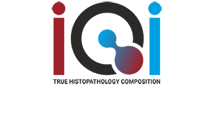 International Quality Instruments