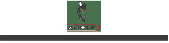 ADOLF7 AUTOMOTIVE INDUSTRIES PVT. LTD.