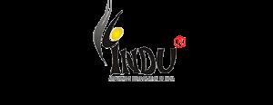 INDU APPLIANCES CORPORATION OF INDIA