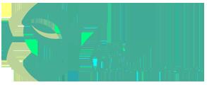 AEROSOL SPECIALITIES (INDIA)