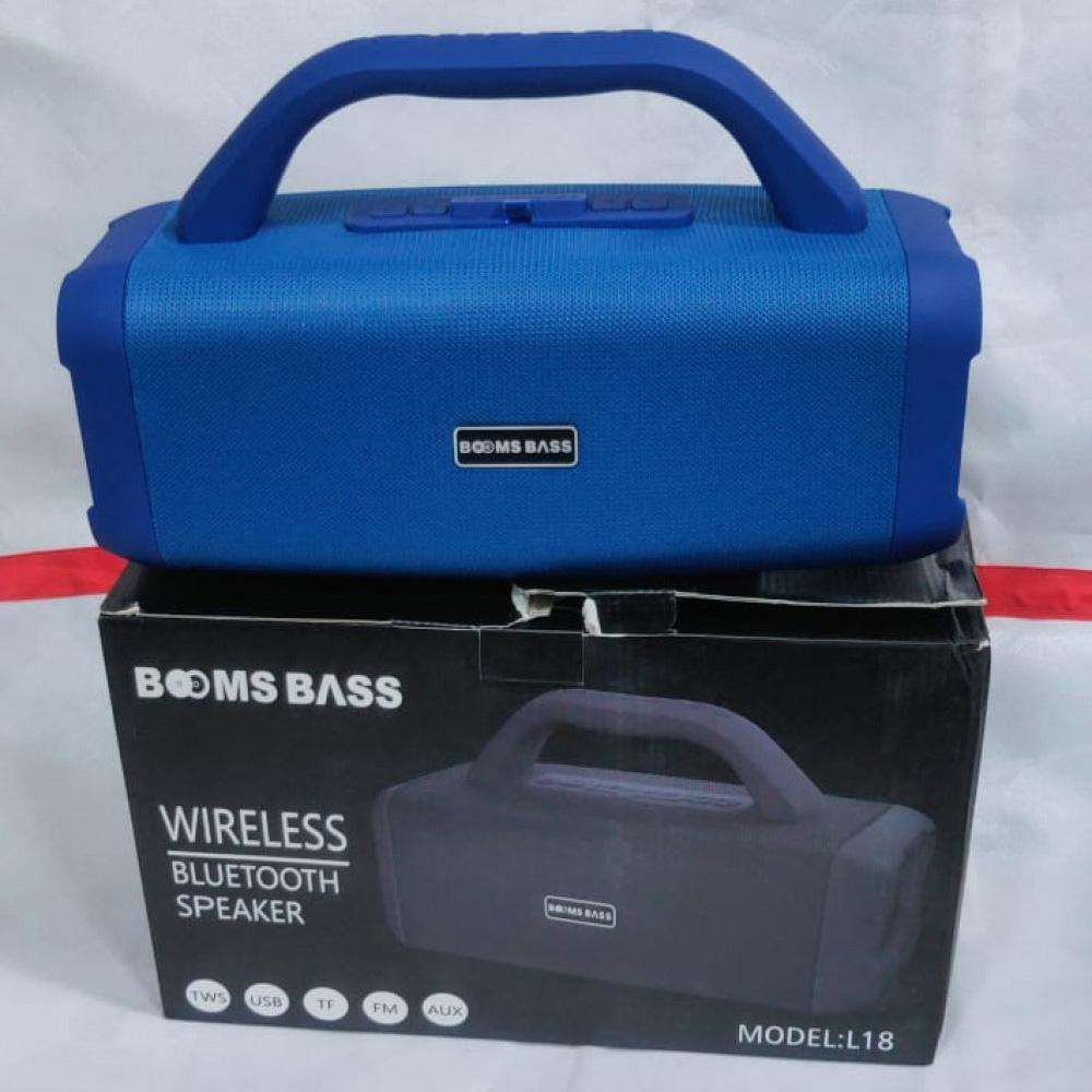 Zoom Star L-18 Wireless Speaker Assorted, 110 W