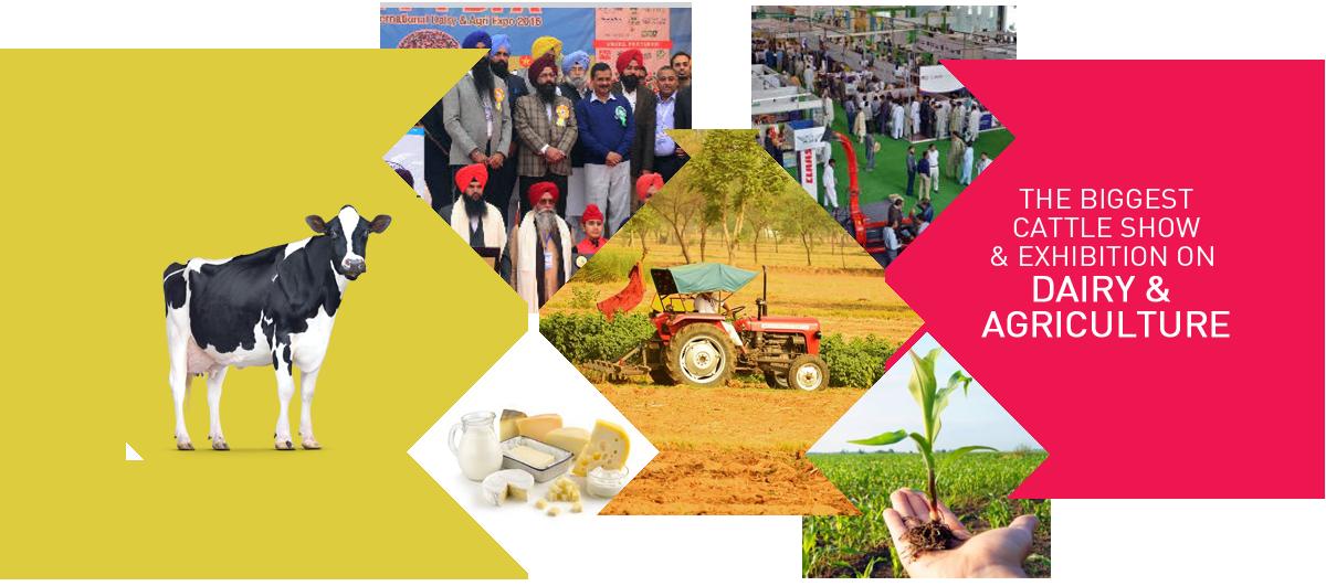 PDFA Expo 2017