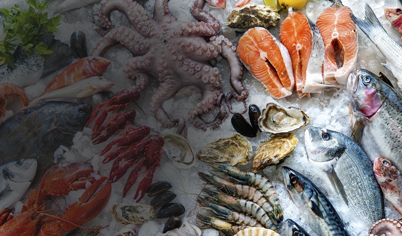 Seoul Int'l Seafood Show 2018