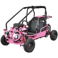 Motor cart
