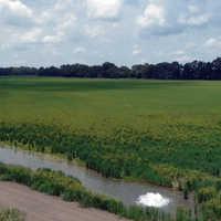 Agricultural land service