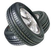 Tyre plants