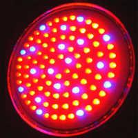 Led neon light
