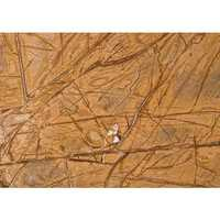 Bidasar marble